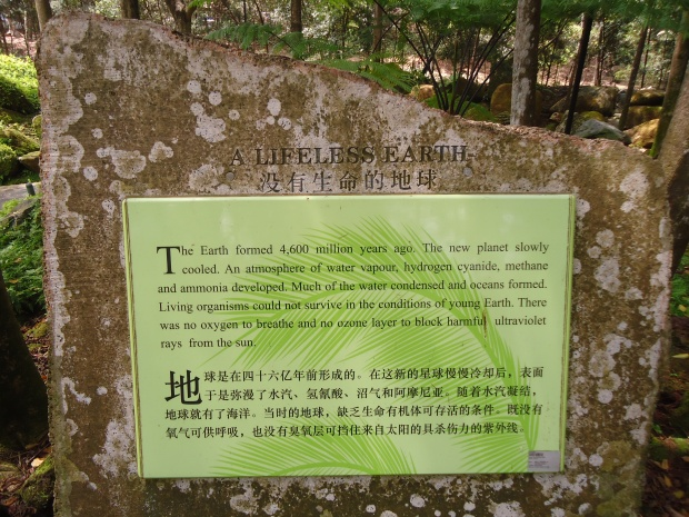 The stone at Evolution Garden