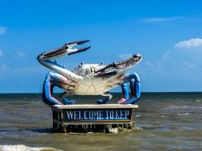 kampot-kep crab
